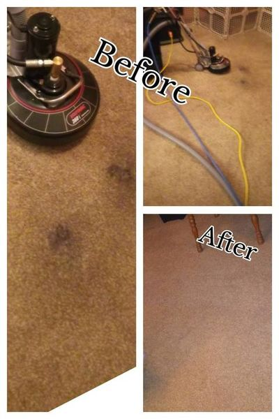 Before & After Carpet Cleaning in Jackson, MI (1)