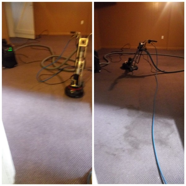 Before & After Deep Cleaning in Ann Arbor, MI (1)